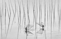 """Xiapu, China. """"Fishermen farm fish."""" By Peng Jiang. Freedom of employment & Tranquility"""
